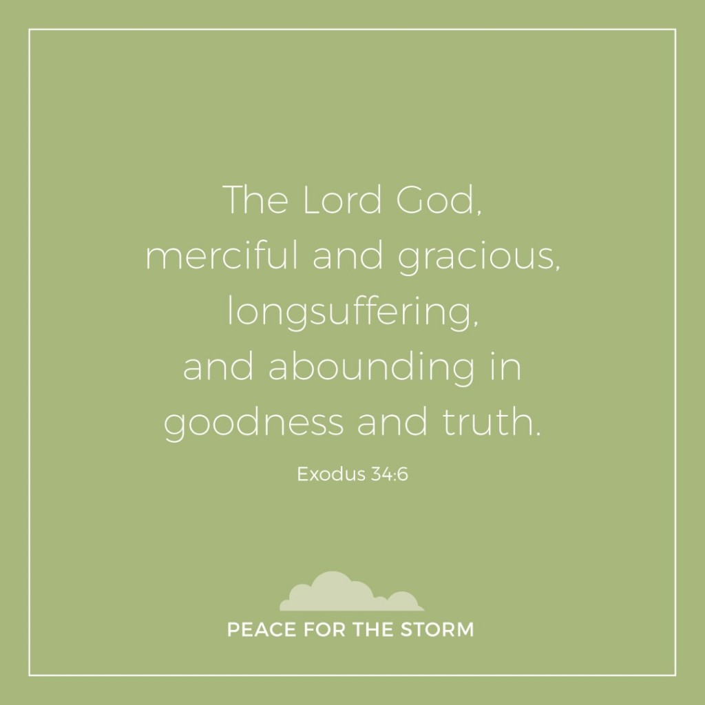 Peace for the Storm Quotes - Abounding in Goodness and Truth