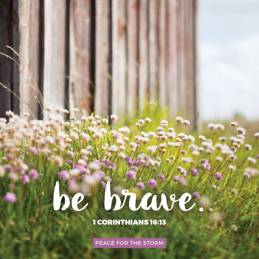 Peace for the Storm Quotes - Be Brave
