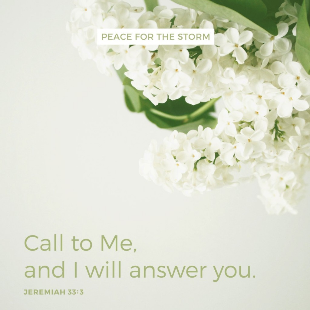 Peace for the Storm Quotes - Call to Me and I Will Answer You
