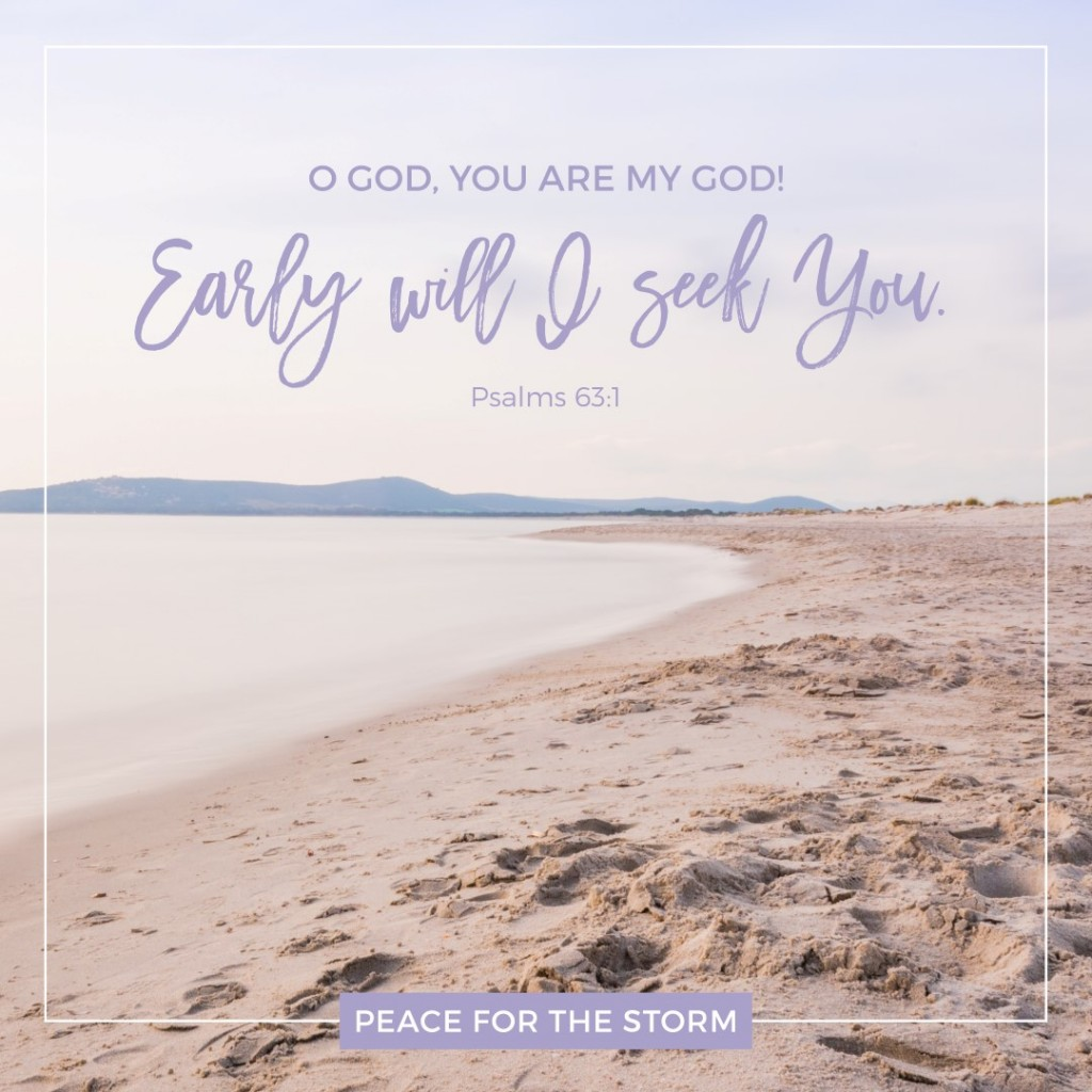 Peace for the Storm Quotes - Early Will I Seek You