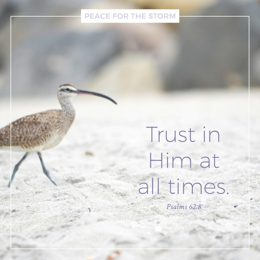 Peace for the Storm Quotes - Trust in Him at All Times