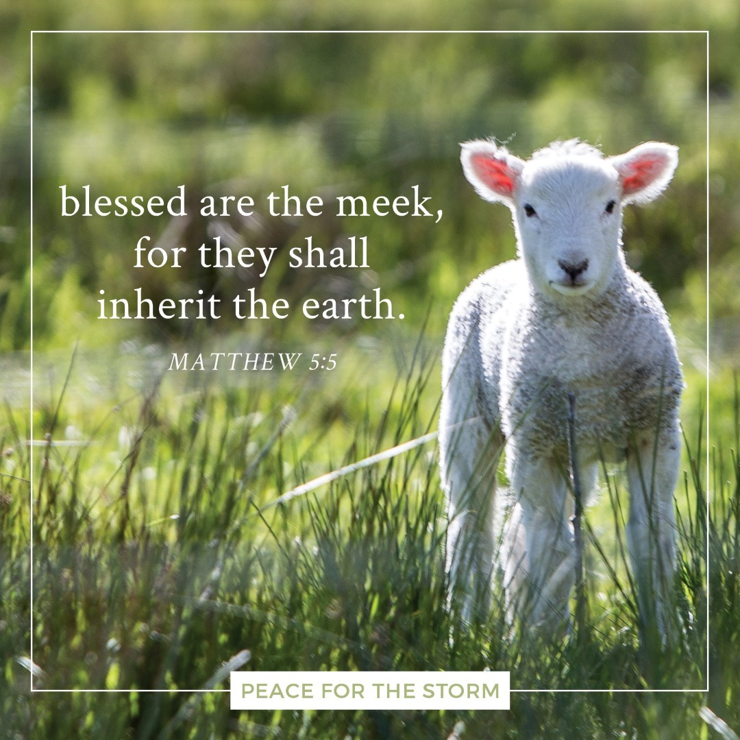 Peace for the Storm Quotes - Blessed are the Meek