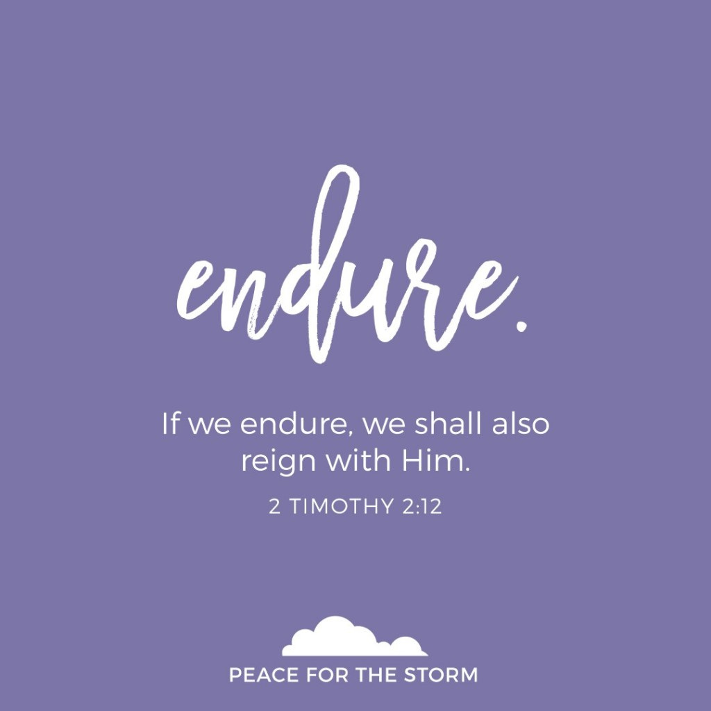Peace for the Storm Quotes - Endure