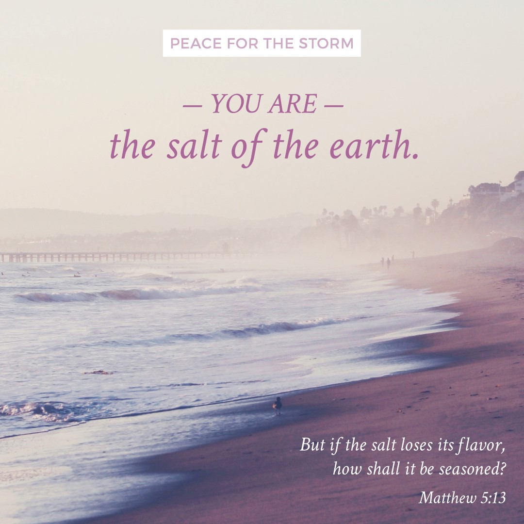 Peace for the Storm Quotes - Salt of the Earth