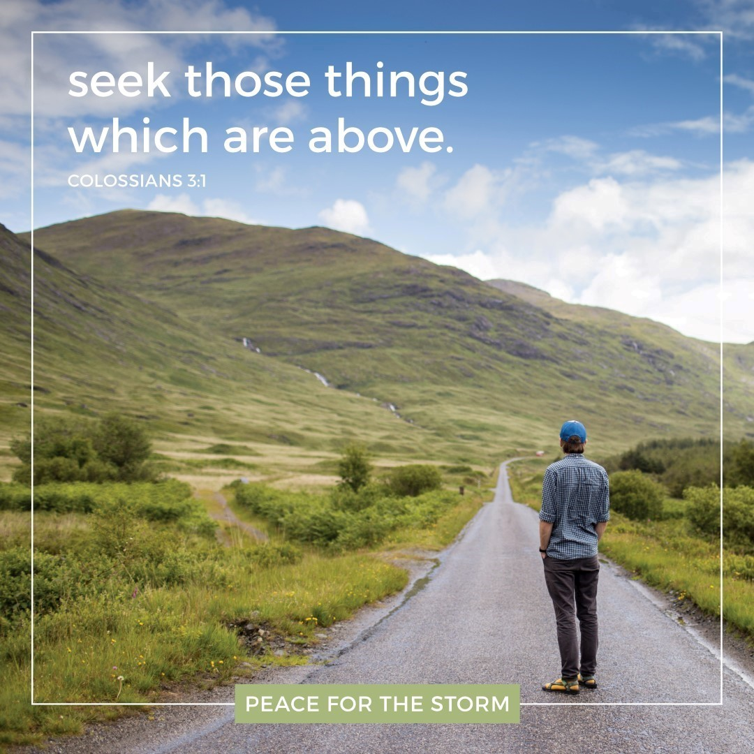Peace for the Storm Quotes - Seek Above
