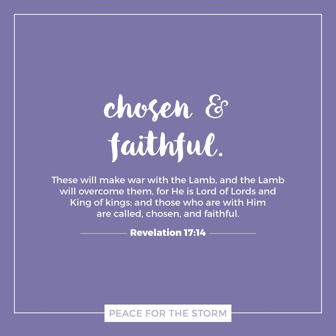 Peace for the Storm Quotes - Chosen and Faithful