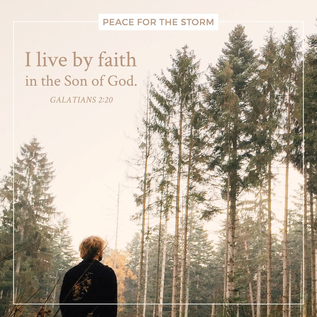 Peace for the Storm Quotes - I Live by Faith
