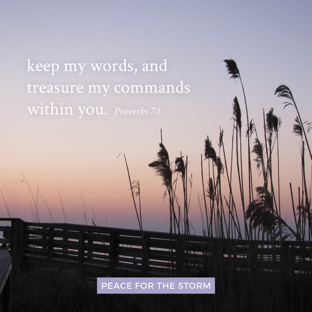 Peace for the Storm Quotes - Keep My Words