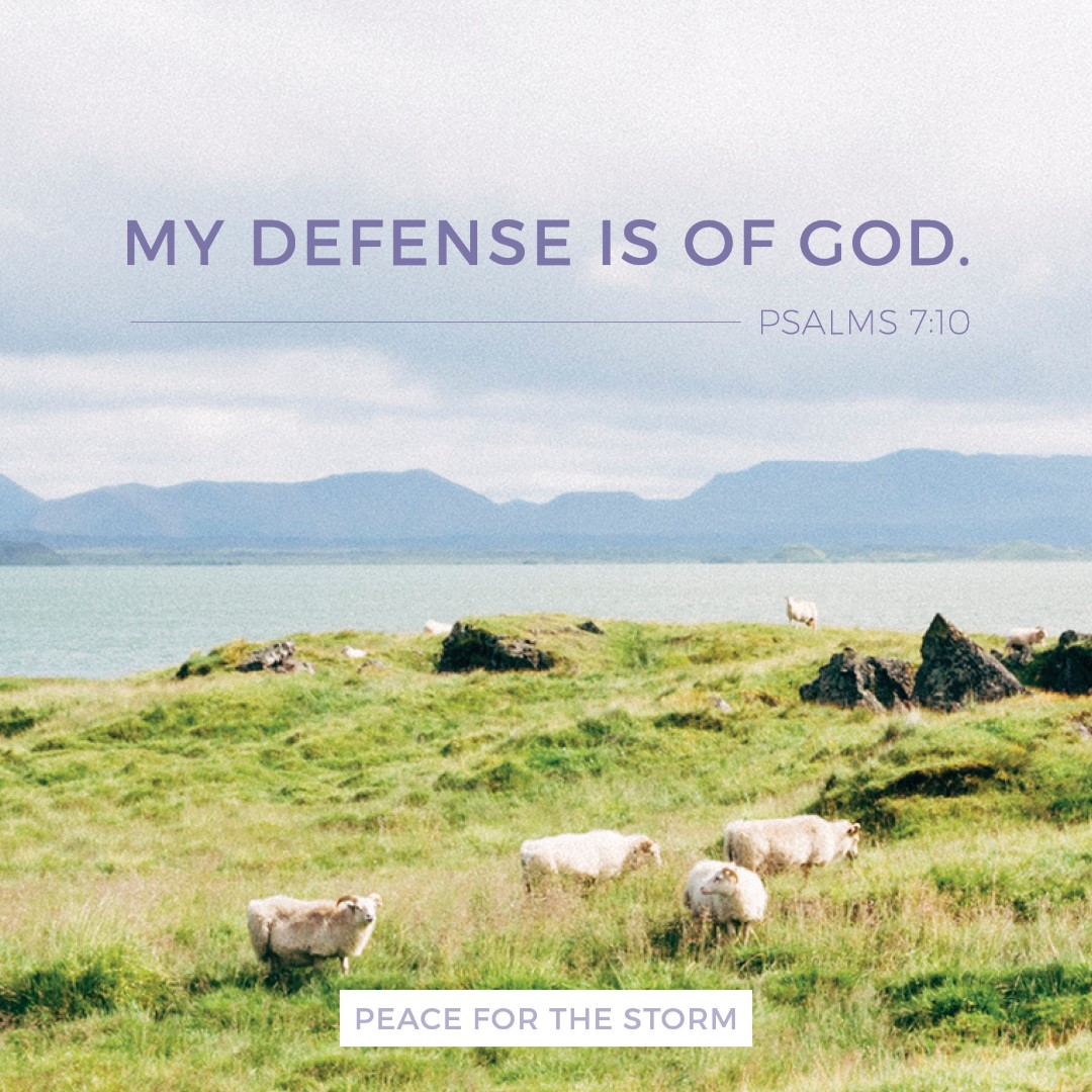 Peace for the Storm Quotes - My Defense is of God