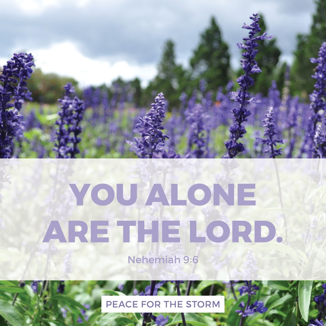 Peace for the Storm Quotes - You Alone are the Lord