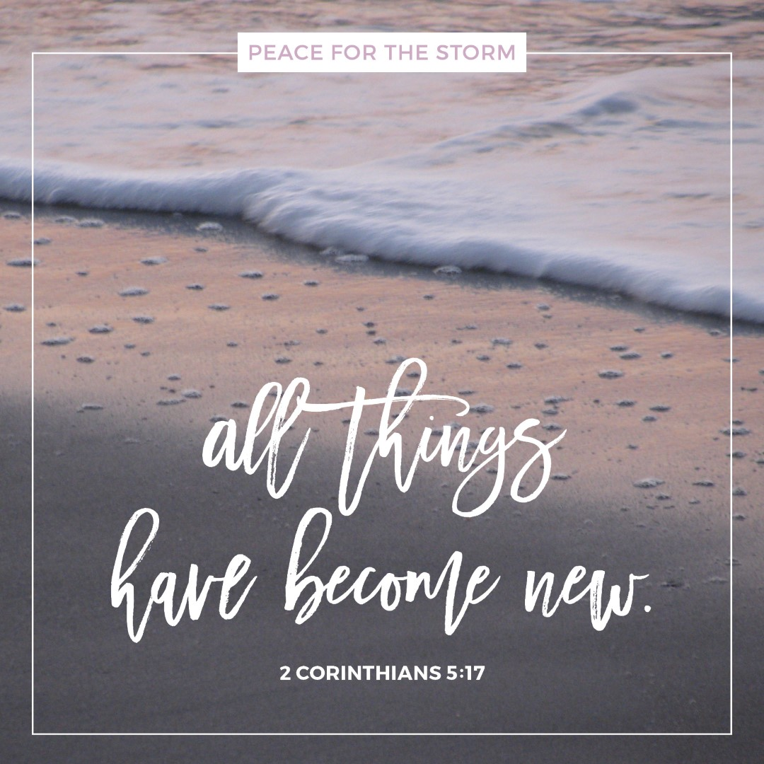 Peace for the Storm Quotes - All Things Have Become New