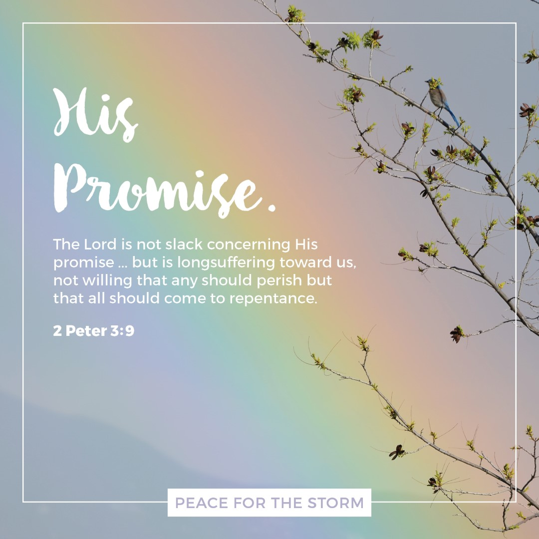Peace for the Storm Quotes - His Promise