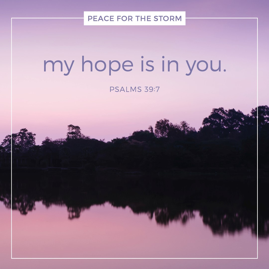 Peace for the Storm Quotes - My Hope is in You