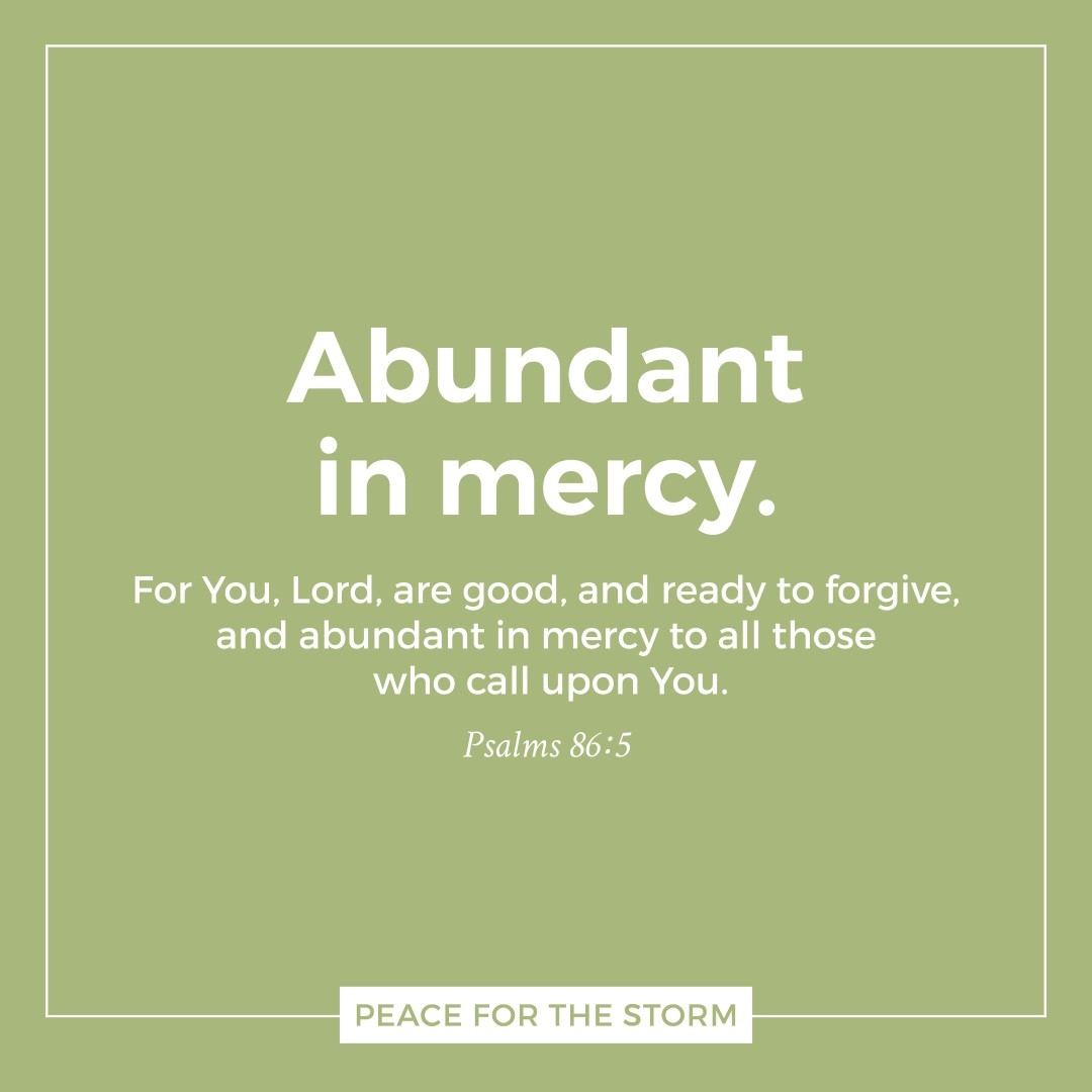 Peace for the Storm Quotes - Abundant in Mercy