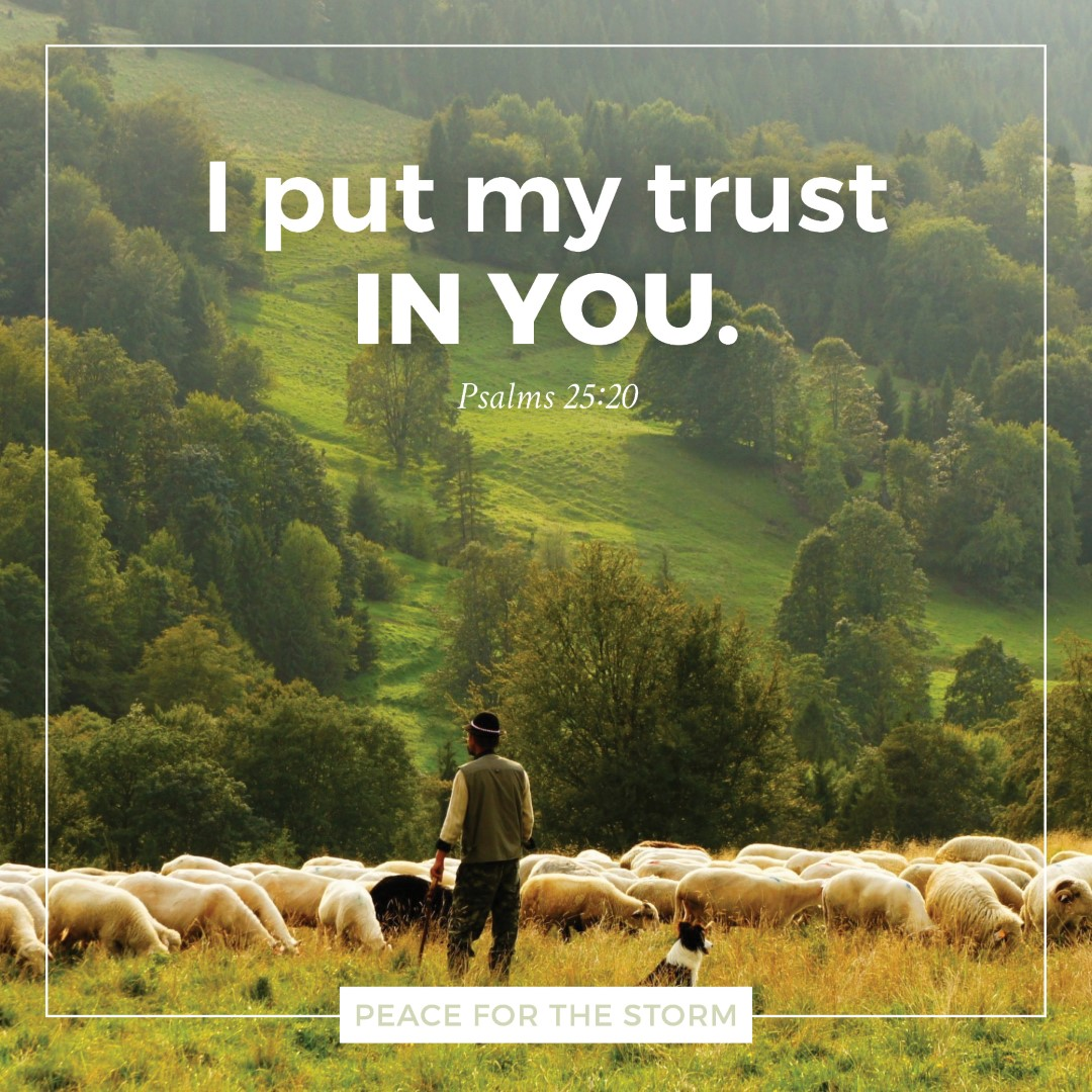 Peace for the Storm Quotes - I Put My Trust in You