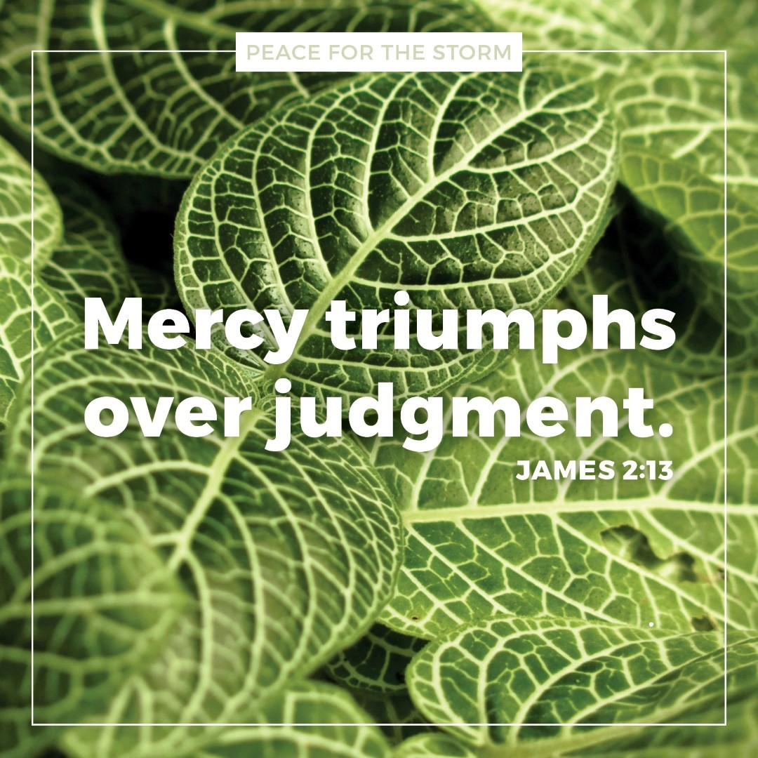 Peace for the Storm Quotes - Mercy Triumphs