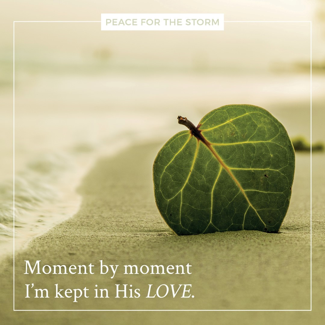 Peace for the Storm Quotes - Moment by Moment
