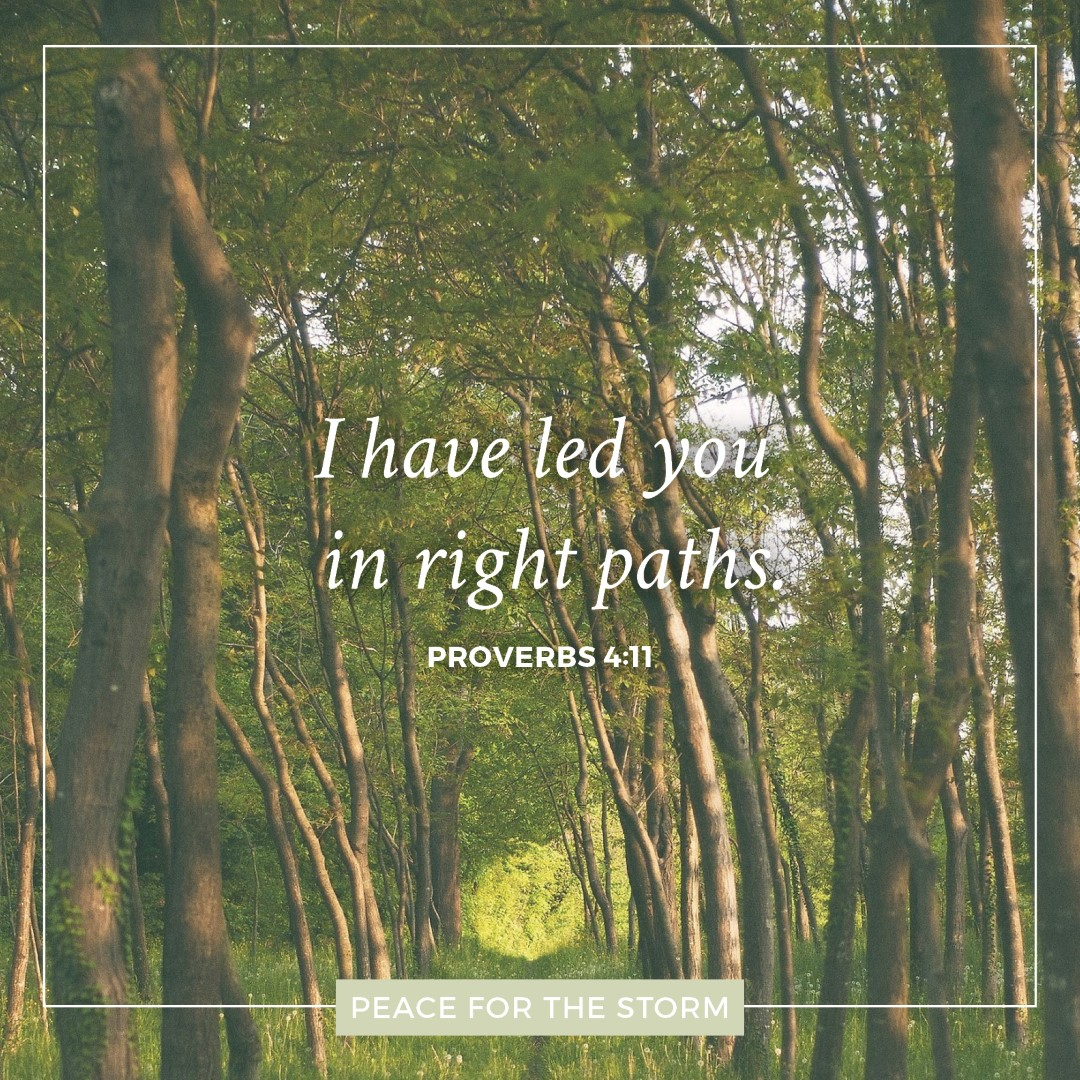 Peace for the Storm Quotes - In Right Paths