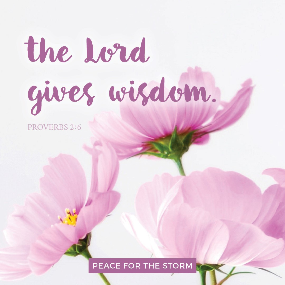 Peace for the Storm Quotes - The Lord Gives Wisdom