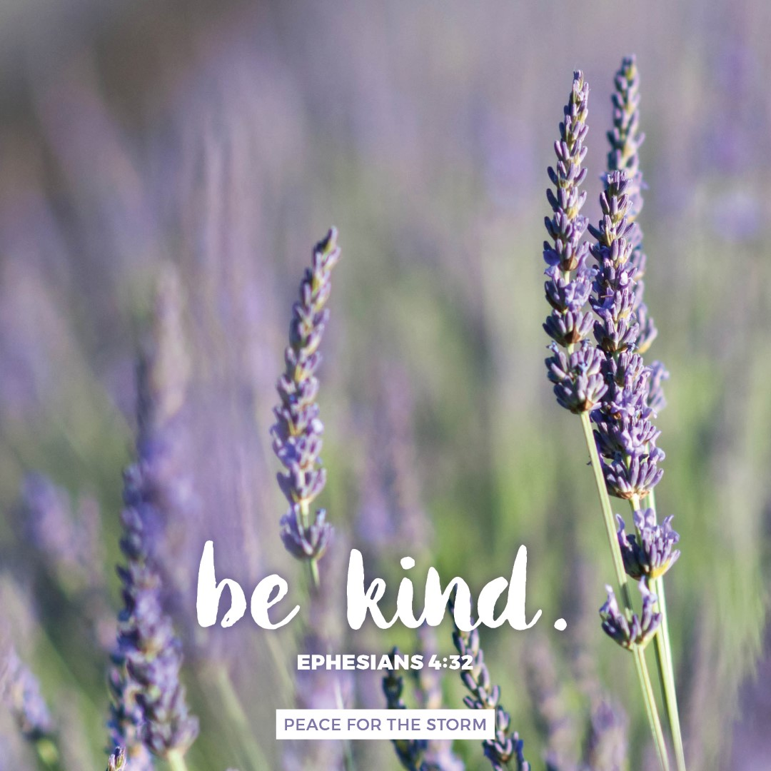 Peace for the Storm Quotes - Be Kind