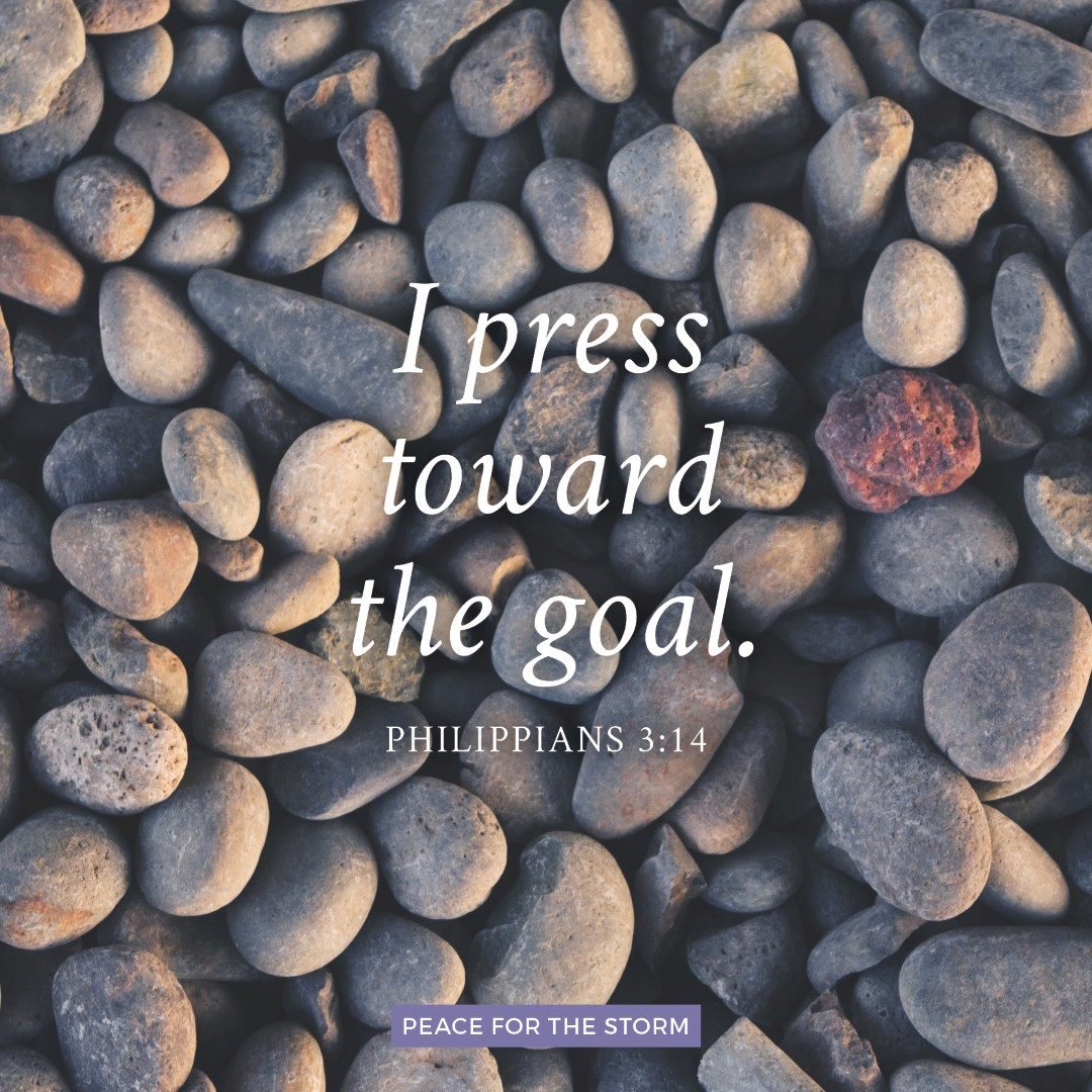 Peace for the Storm Quotes - I Press Toward the Goal