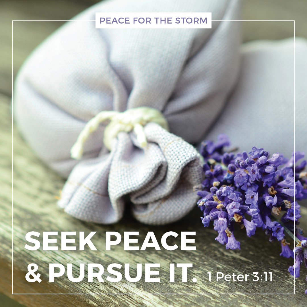 Peace for the Storm Quotes - Seek Peace