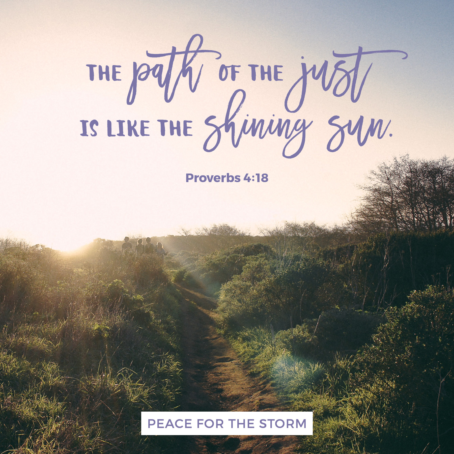 Peace for the Storm Quotes - The Path of the Just