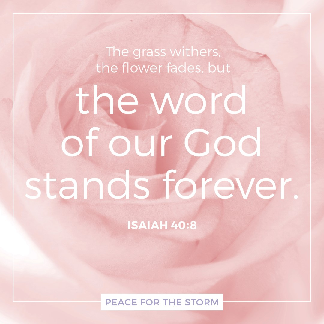 Peace for the Storm Quotes - The Word of Our God