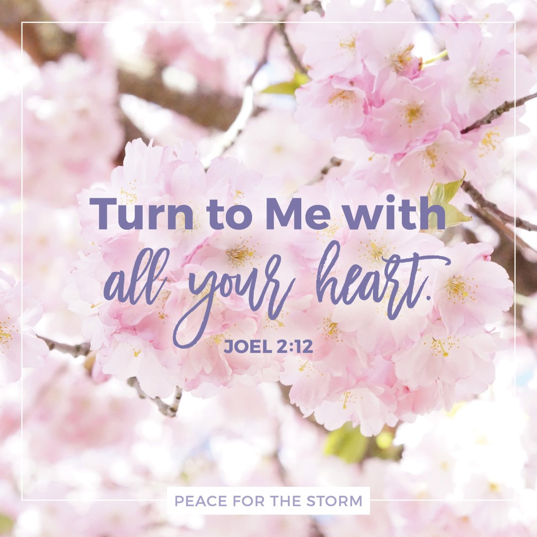 Peace for the Storm Quotes - Turn to Me