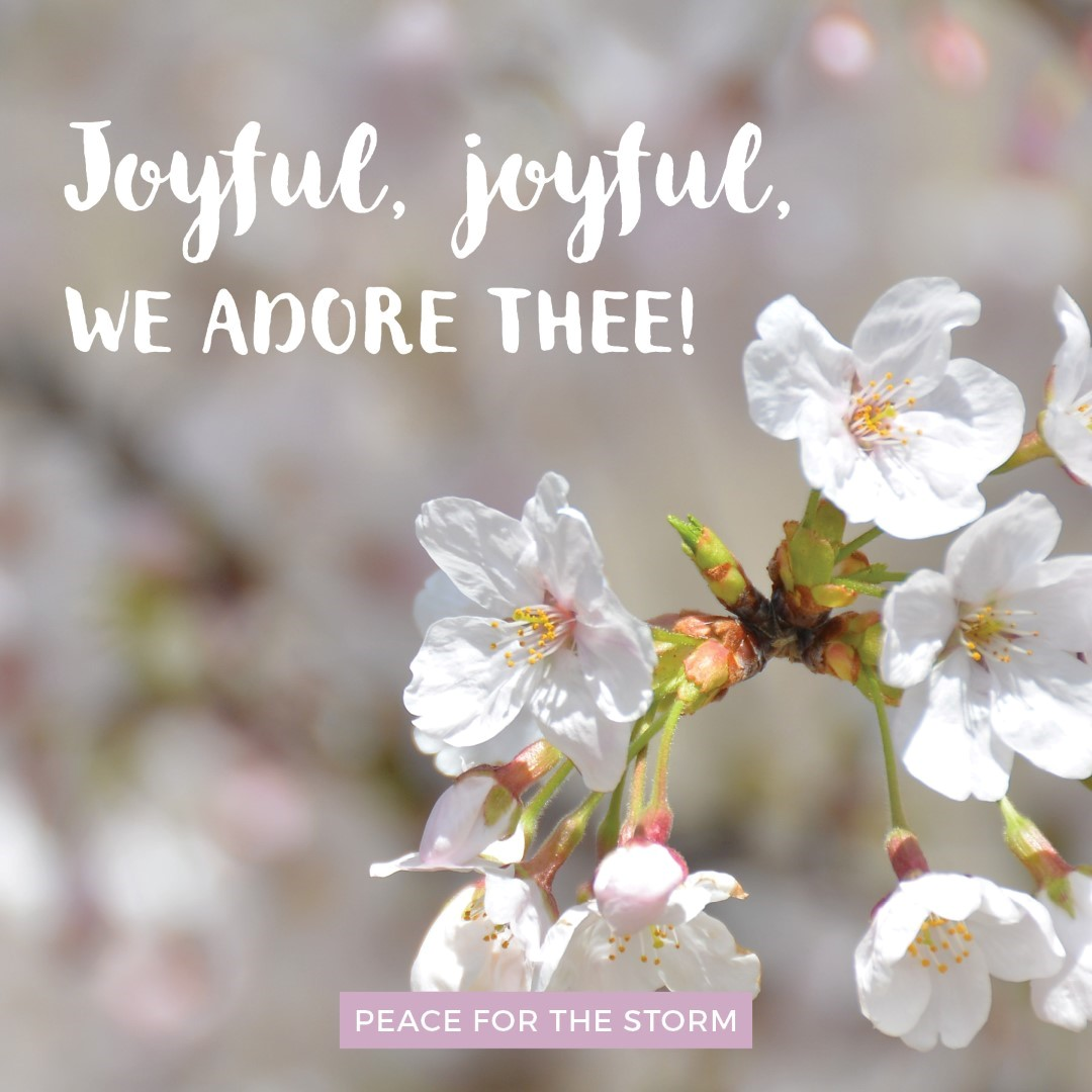 peace-for-the-storm-quotes-joyful-joyful