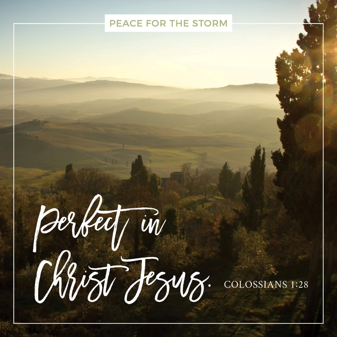 Peace for the Storm Quotes - Perfect in Christ Jesus