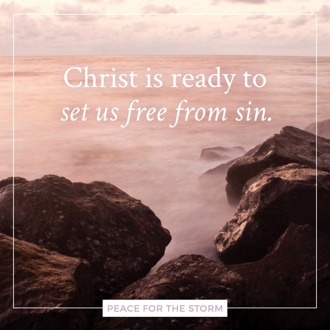 Peace for the Storm Quotes - Set Free from Sin