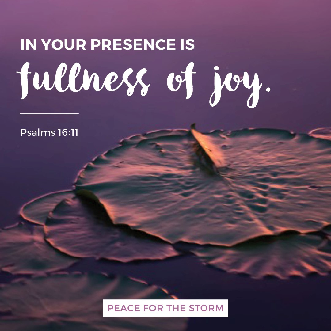 peace-for-the-storm-quotes-fullness-of-joy