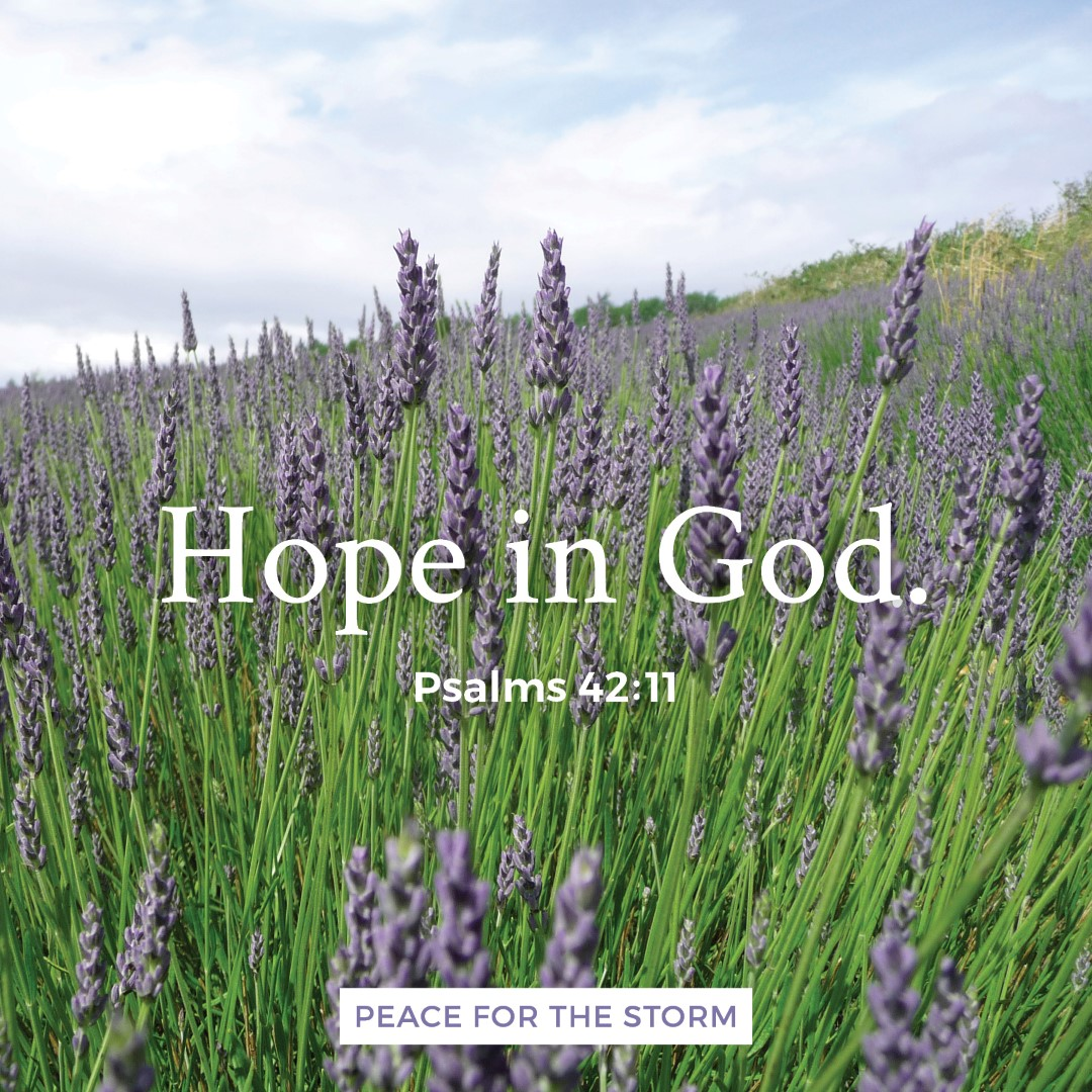 peace-for-the-storm-quotes-hope-in-god