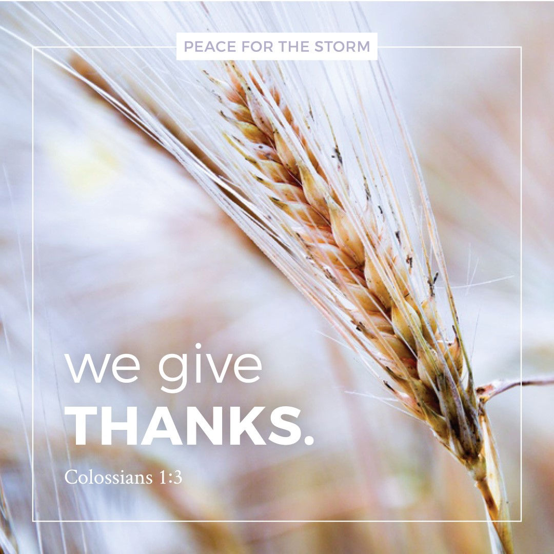 peace-for-the-storm-quotes-we-give-thanks