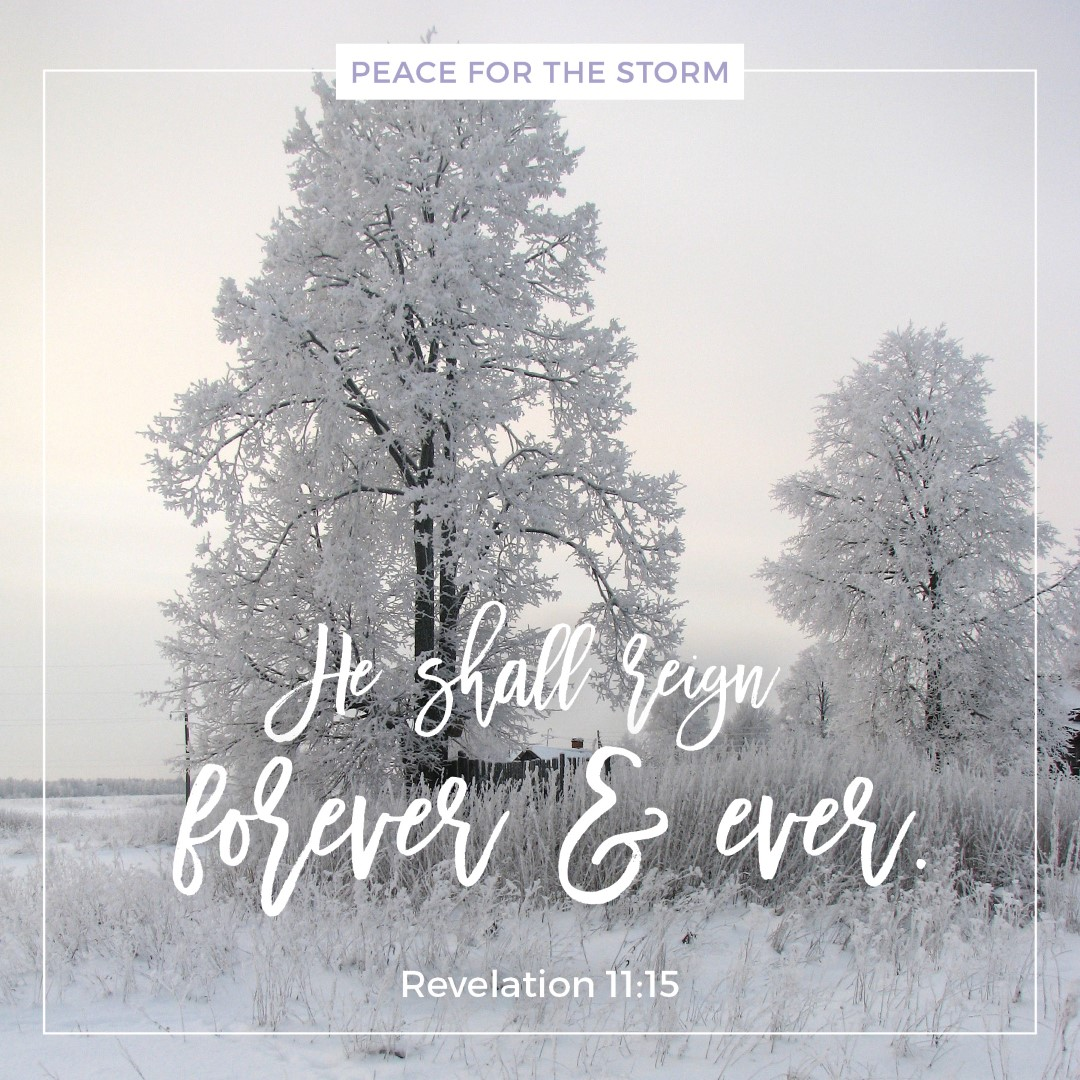 peace-for-the-storm-quotes-he-shall-reign
