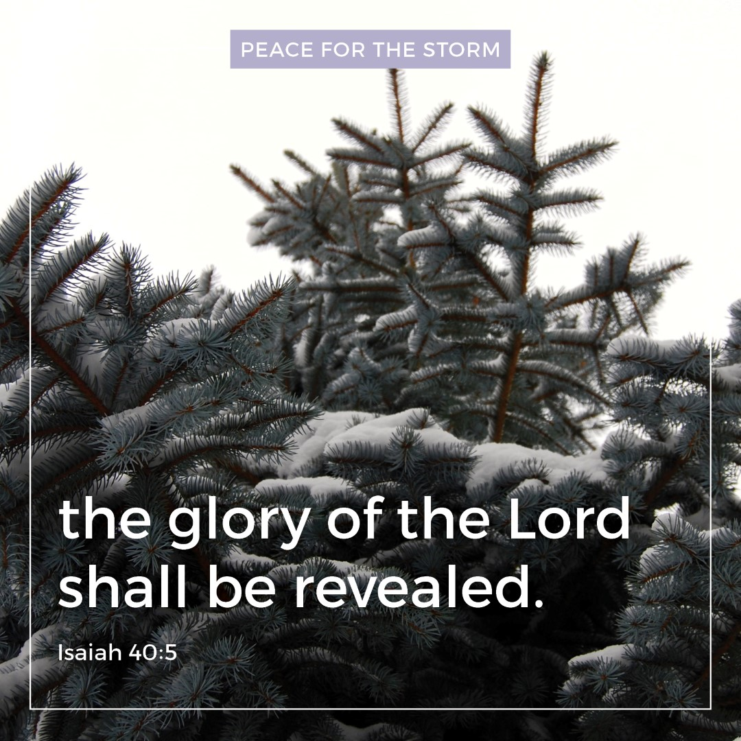 peace-for-the-storm-quotes-the-glory-of-the-lord