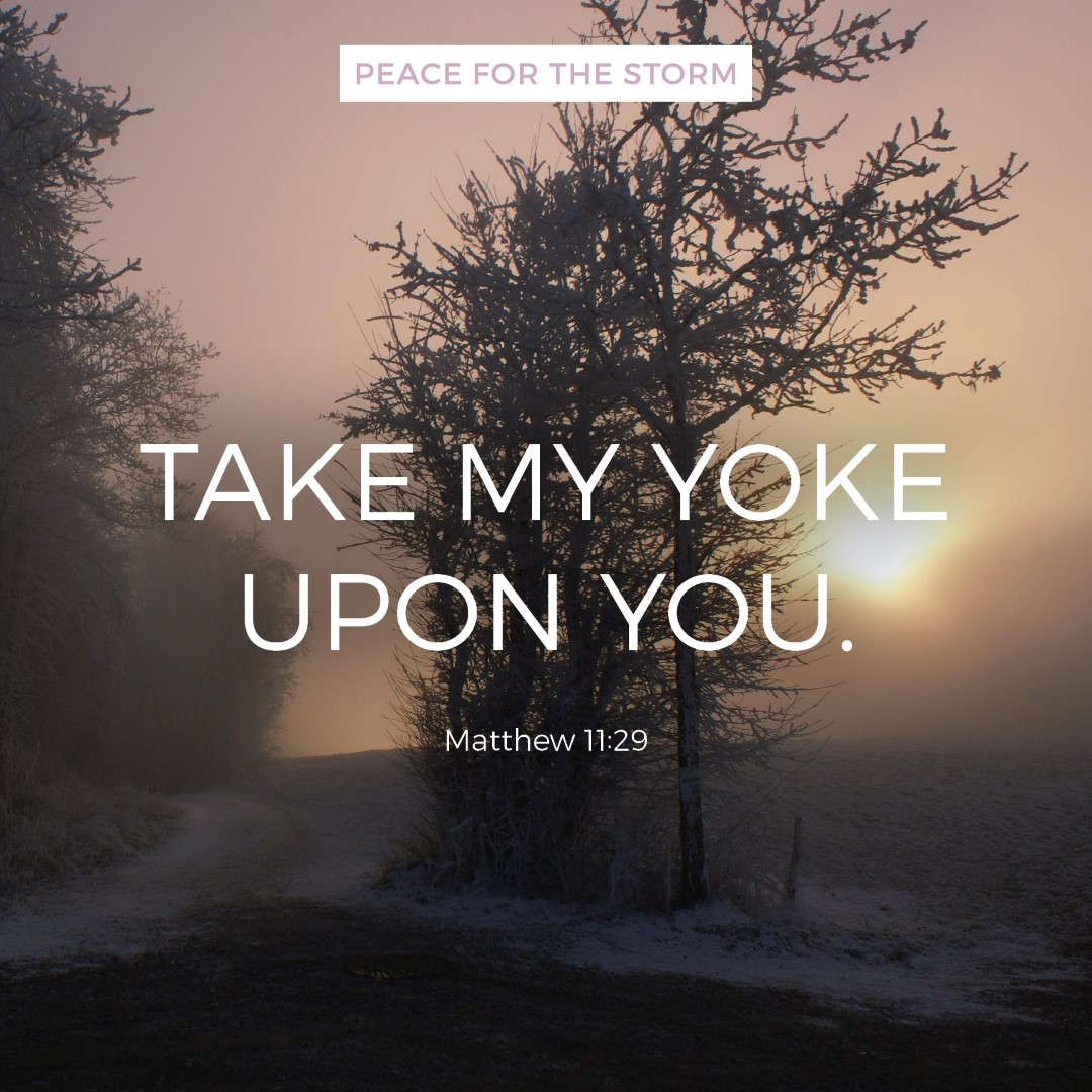 peace-for-the-storm-quotes-take-my-yoke