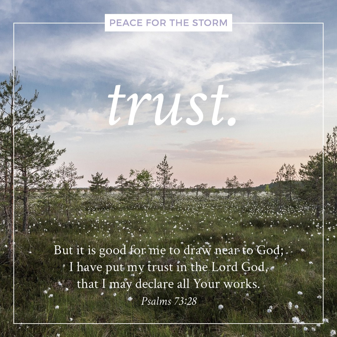 peace-for-the-storm-quotes-trust
